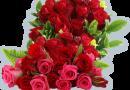 Вітаємо з Днем народження Созоненко Вікторію Володимирівну!