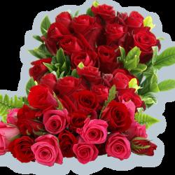Вітаємо з Днем народження Фою Олену Володимирівну!