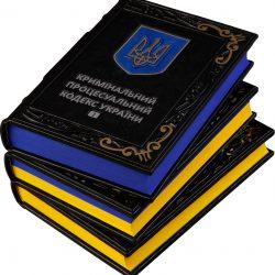 З 11 січня 2019 року набирають чинності зміни до КК та КПК України.
